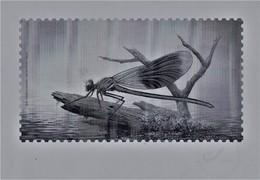 """Zwart/wit Blaadje Bpost """"Libellen"""" Buzin - 1985-.. Birds (Buzin)"""
