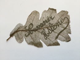 Rare Feuille D'arbre Travaillée Artisanat De Tranchée  14x8,5 Cm 1914-18 - 1914-18