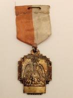 Een Voor Allen Allen Voor Een  Ziekenkas Pelican Pelikaan Medal Médaille - Belgium