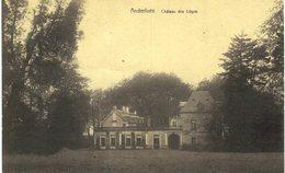 ANDERLUES   Château Des Loges. - Anderlues