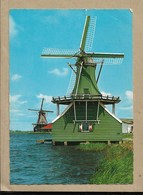 Olanda - Viaggiata - Zaandam