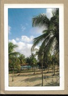 Costa D'Avorio - Viaggiata - Costa D'Avorio