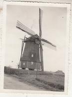 Kruiningen - Windmolen En Omgeving - Foto 8.5 X 11.5 Cm - Andere