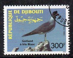 XP4080 - GIBUTI 1993, Iris Blanc Usato (2380A) - Gibuti (1977-...)