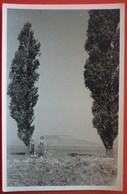 HUNGARY UNIDENTIFIED PLACE - ORIGINAL PHOTO 1944 - Ungheria