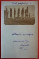 HUNGARY UNIDENTIFIED PLACE - ORIGINAL PHOTO 1905 - Ungheria