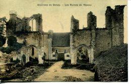 N°76980 -cpa Environs De Donzy -les Ruines De L'Epeau- - Autres Communes