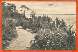 DK118, * KIGNAES * SENT From JAEGERSPRIS 1908 - Denmark