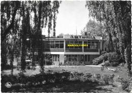 Deux-Acren - Chalet Astoria ( Carte Publicitaire - Propriétaires Scheepmans-Wargnies ) - Lessines