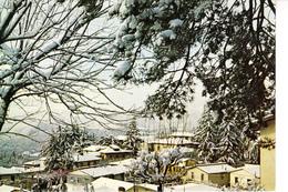 20-1182 BIVIGLIANO FIRENZE - Firenze