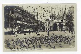 CPA - Venise - Venezia - Piazza S. Marco - Piccioni - Carte Photo - Photographie - Photo - Venezia