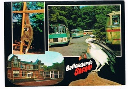 B-7468   ZILLEBEKE : Safari Bellewaarde ( Zoo, Dierentuin ) - Ieper