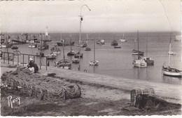 ILE De NOIRMOUTIER. L'HERBAUDIERE. Le Port - Ile De Noirmoutier