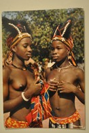 Beaute Feminine Afrique Femmes Seins Nus Petites Danseuses Africaines - Zuid-, Oost-, West-Afrika