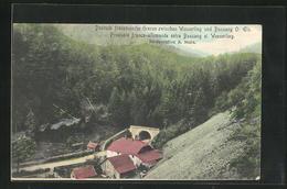AK Wesserling-Bussang, Deutsch Französische Grenze - Zoll