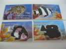 Grenada Grenadines-Fish-Marine Life - Fische