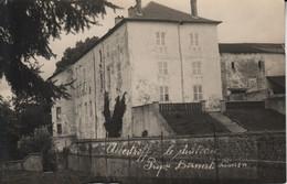 57 ALBESTROFF  Le Château Carte-photo  Propriété Bornert Limon - Albestroff