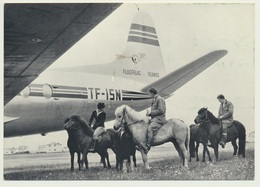 AK  Reykjavik Airport Iceland From Pony To Plane - Aerodromes