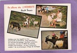 74  Montriond LES LINDARETS Sur La Route Du Col De La Joux Verte Les Chèvres Des Lindarets Multivues Paysage Du CHABLAIS - Andere Gemeenten