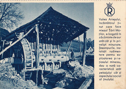 CONCASSEUR TYPE MOULIN À EAU / WATER MILL CRUSHER - VALEA ARIESULUI : EXPLOITATION D' OR / GOLD MINING ~ 1935 (ad360) - Roumanie