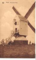 BB193 Veerle Haenvensche Molen Ca 1910 - Laakdal