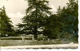 Postal Chateau De Touscayrats. Un Coin Du Parc. 1960. Ref. 7-fra271 - Francia