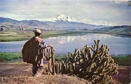 CHIMBORAZO - CARIHUAYRAZO - LAGUNA De COITA Con INDIECITO  - - Ecuador