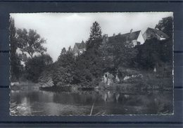 70. Pesmes. Les Bords De L'ognon Et Château Rouillaux. Cpsm Petit Format - Pesmes