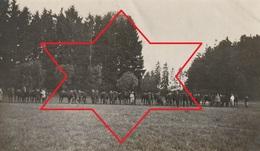 Photo Juillet 1915 CROISMARE (près Lunéville) - Promenade Des Chevaux Au Parc Du Château (A216, Ww1, Wk 1) - Francia