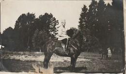 Photo Juillet 1915 CROISMARE (près Lunéville) - Promenade Des Chevaux Au Parc Du Château, Un Dragon (A216, Ww1, Wk 1) - Guerra 1914-18