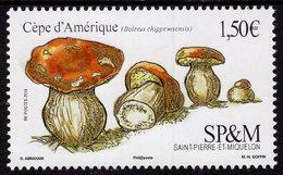 St. Pierre & Miquelon - 2019 - Mushrooms - Boletus Chippewaensis - Mint Stamp - Unused Stamps