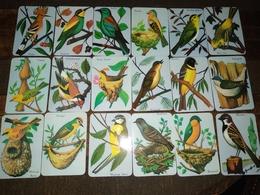 """18 Portuguese Pocket Calendar, Calendário Português """"Animals, Aves, Birds"""" Advertising - Calendriers"""