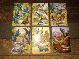 """6Portuguese Pocket Calendar, Calendário Português """"Animals, Aves, Birds"""" Advertising - Kleinformat : 1981-90"""