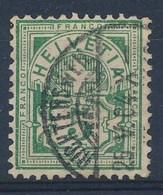 """HELVETIA - Mi Nr 53 - Cachet """"RICHTERSWIL"""" - (ref. 1637) - Gebraucht"""