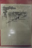 Facture Auguste Peureux Distillation & Rectification D'alcools Fabrique D'absinthe Fougerolles 1904 - 1900 – 1949