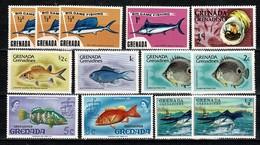 Grenada  - 13 Stamps (fishes - Vissen - Poissons) MNH - Grenade (1974-...)