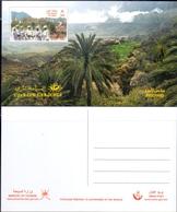 OMAN Palm Trees Postcard - Oman