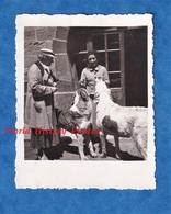 Photo Ancienne Snapshot - Col Du GRAND SAINT BERNARD - Juillet 1936 - Chien Animal Bourg St Pierre Suisse Valais - Lieux
