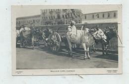 Karachi (Pakistan) : Bullock Cars En 1945 (animé)  PF. - Pakistan