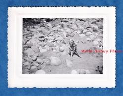 Photo Ancienne Snapshot - HERBILLON , Algérie - Petite Fille à La Plage - Galet Rocher Enfant Jeu - Africa