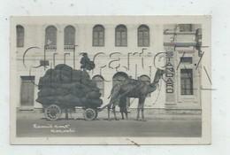 Karachi (Pakistan) : Camel Cars En 1945 (animé)  PF. - Pakistan