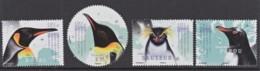 3.- TAAF 2018   The Penguins In Panorama - Tierras Australes Y Antárticas Francesas (TAAF)