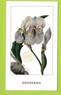 Cartes Parfumées Carte DZONGKHA De L'ARTISAN PARFUMEUR   Recto Verso - Cartes Parfumées