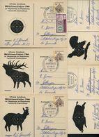 Bund PP33 C2/001 WÄLDCHESSCHIESSEN FRANKFURT Sost.1966  NGK 50,00 € - [7] République Fédérale