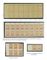 ARGENTINA: GJ.1033, 5c. José Hernández, Study Of The Issue On 3 Exhibition Pages, Including Varieties For Examples Marks - Argentina