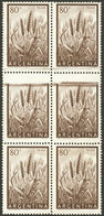ARGENTINA: GJ.1044, 80c. Wheat Printed On Chalky Paper, Block Of 6, The Central Stamps Partially Unprinted (without Face - Argentina