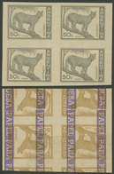 ARGENTINA: GJ.1125, 50c. Puma, PROOF In Gray, Imperforate Block Of 4 Printed On Special Paper For Specimens, On Back It  - Argentina