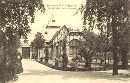 Hoogboom - Hortensiahof  Ecurries - H001e - 1920 - Kapellen