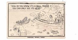 CHAPLEAU, Ontario, Canada, Comedy- Bull Moose, 1956 Real Photo Photo Postcard, Sudbury County - Ontario