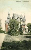 Hoogboom - Kasteel Hortensiahof - K001ekl - 1911 - Kapellen